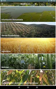 RAIF Andalucía - náhled