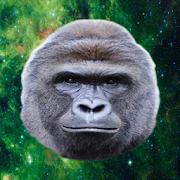 Feed Harambe the Gorilla‏