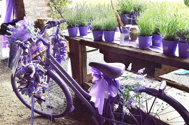 Una bici... alla lavanda! di Niki