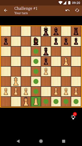 Chess 1.10.1 screenshots 7