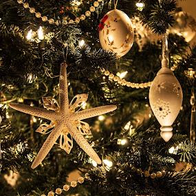 White Christmas by Terri Schaffer - Public Holidays Christmas