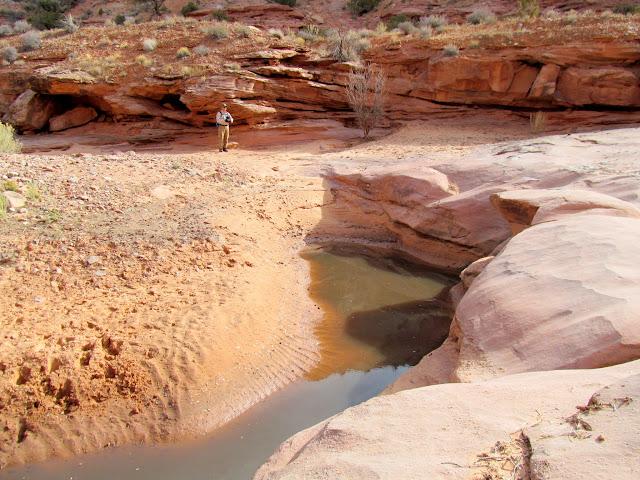 Dryfall and pool