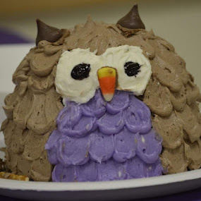 Who who who's birthday is it by Moe Cusick - Food & Drink Cooking & Baking ( desserts, birthday, decorative, cakes, owl,  )