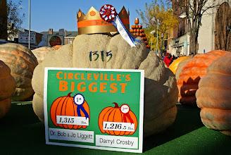 Photo: The record pumpkin
