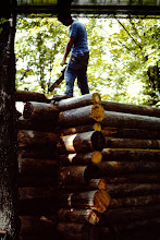 Photo: Getting close to the top of the wall; 11 logs high