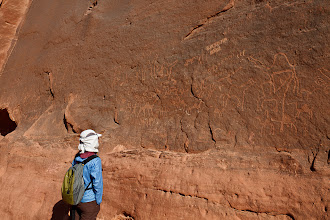 Photo: Camel petroglyphs