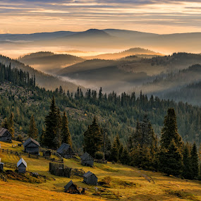 Poiana Calineasa by Luca Arșinel - Landscapes Mountains & Hills (  )