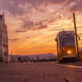 tram in budapest during sunset by Mo Kazemi - City,  Street & Park  Street Scenes ( budapest hungary, golden hour, sunset, magic hour, budapest, tram, europe, street photography, transportation, hungary )