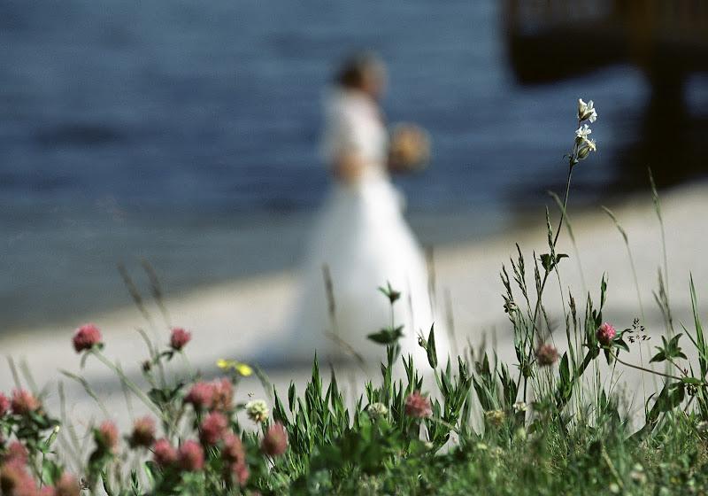 fiori per un sposa di alvaze19