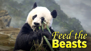 Feed the Beasts thumbnail