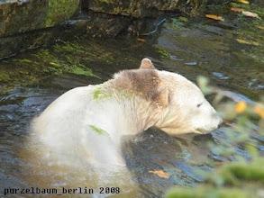 Photo: Kurzer Ausflug ins Wasser ;-)