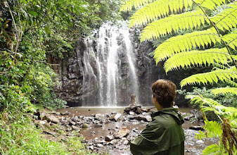 "Photo: Millaa Millaa falls, prolly the most photographed on the ""waterfall circuit"" on the Tablelands."