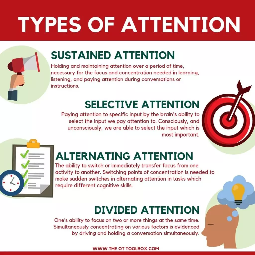 The 4 types of attention: sustained, selective, alternating and divided.