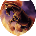 Dancing with fire Live WP icon