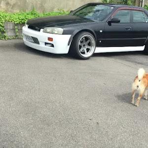 スカイライン HR34 GTスペシャルエディションのカスタム事例画像 uchida_ddさんの2019年09月04日01:07の投稿