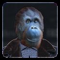 Animal Photo Editor icon