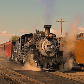 Narrow gauge train by Ron Olivier - Transportation Trains ( narrow gauge train,  )