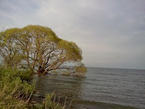Photo: 高島。琵琶湖を目指して、以前住んでた家の近所を自転車散歩。なじみの場所。