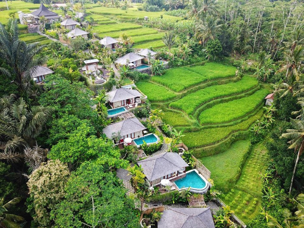 Best_Places_To_Visit_In_Indonesia_Ubud