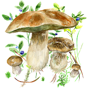 App Mushrooms app APK for Windows Phone