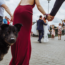 Wedding photographer Alina Postoronka (alinapostoronka). Photo of 03.09.2017