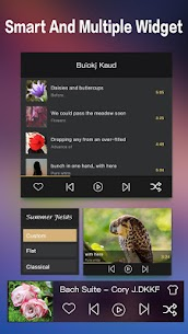 Music Player (Remix) v1.6.3 Mod APK 7