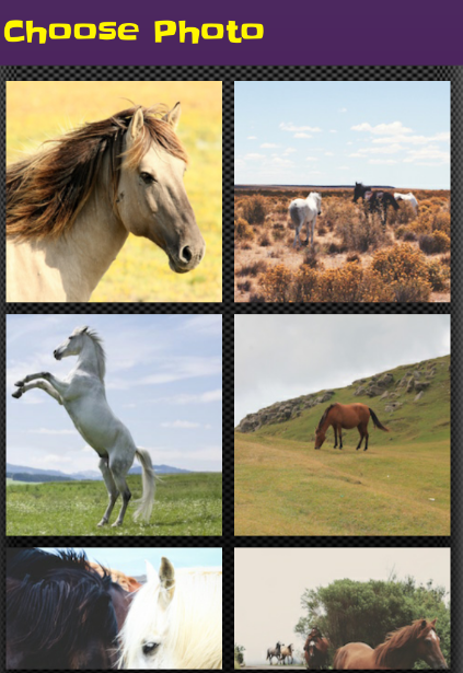 Horse Puzzle Jigsaw For Kids- screenshot