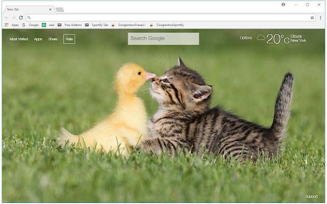 Cute Ducks HD Wallpaper Duck New Tab Themes