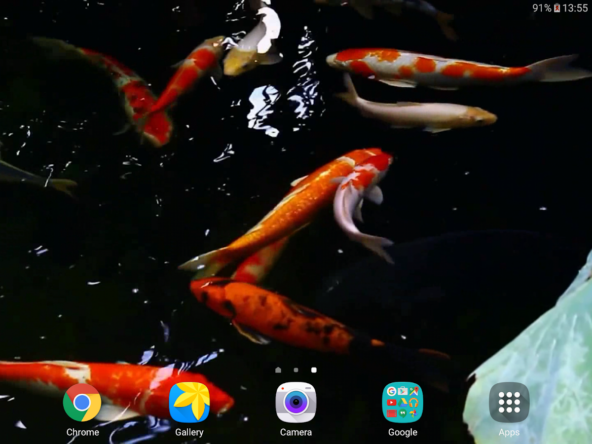 koi live wallpaper full version apk free download koi free live