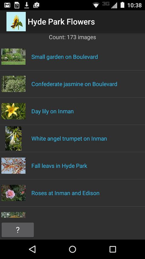 Hyde Park Flowers- screenshot