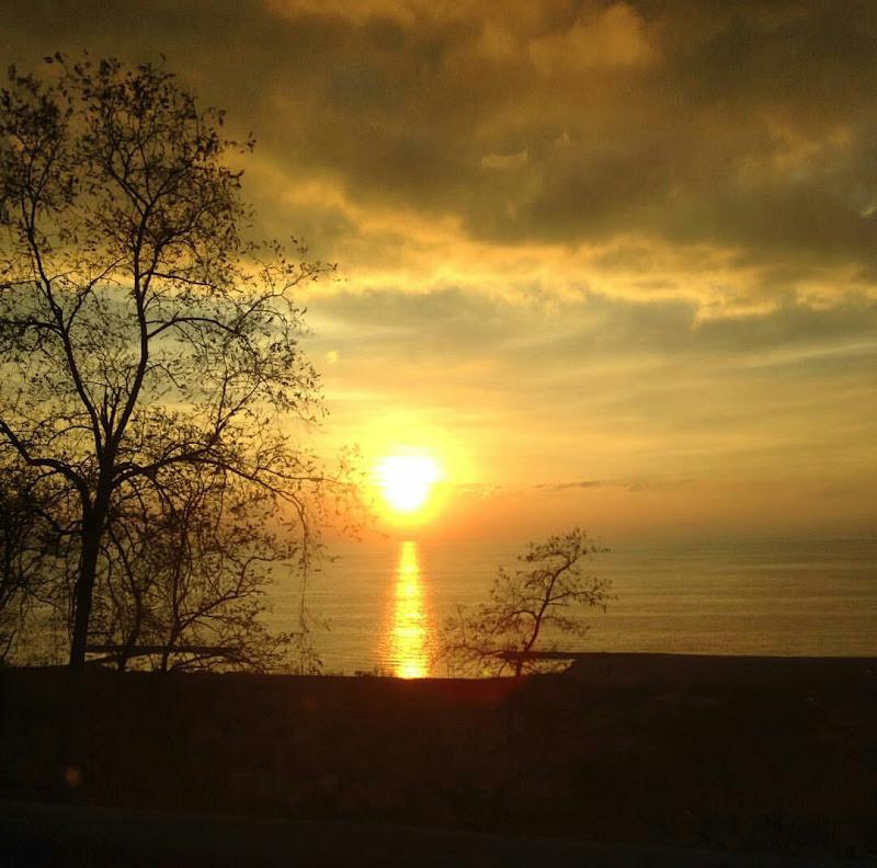 Quanto è bono l'odore del mare di enrica manna