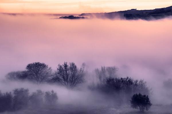 La nebbia agli irti colli..... di Samuele Tronchi