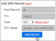 The TXT record fields are all completed and the add record button is selected.