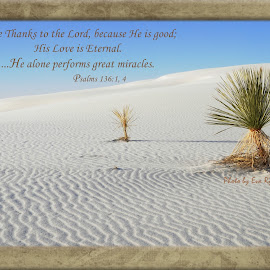 Give Thanks by Eva Ryan - Typography Quotes & Sentences ( desert, quote, scripture, white sands, new mexico,  )