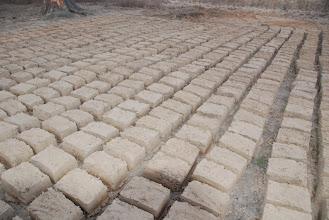 Photo: moulage et séchage de briques