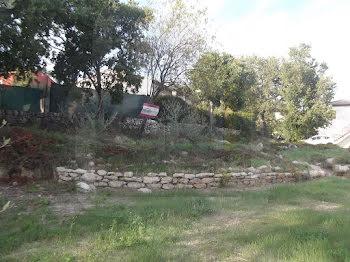terrain à Montfort-sur-Argens (83)
