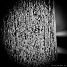 Photo: _MG_7412