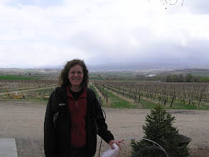 Photo: Idaho is a mix of desert, wilderness, farmland, subdivisions, cities....and vineyards.