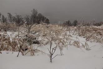 Photo: Zima už plne ovládla krajinu