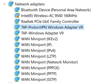 The Network Adapters on a Ethernet connected laptop