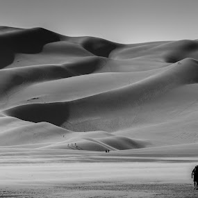 Long walk to the top by Domingo Washington - Landscapes Deserts ( sand, dunes, sand dunes, dune, great sand dunes national park, colorado, great sand dunes, alamosa )