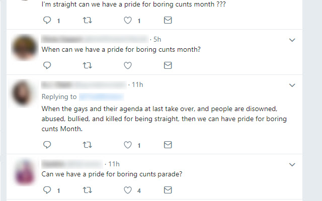 Straight Pride corrector