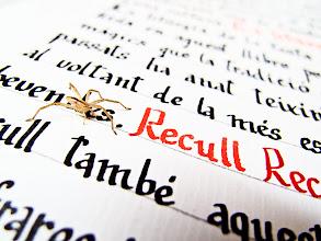Photo: Notes al marge des de l'Abadia: visita fugaç a l'escriptorium d'una aranya a la que li falta una pota. Seguim.