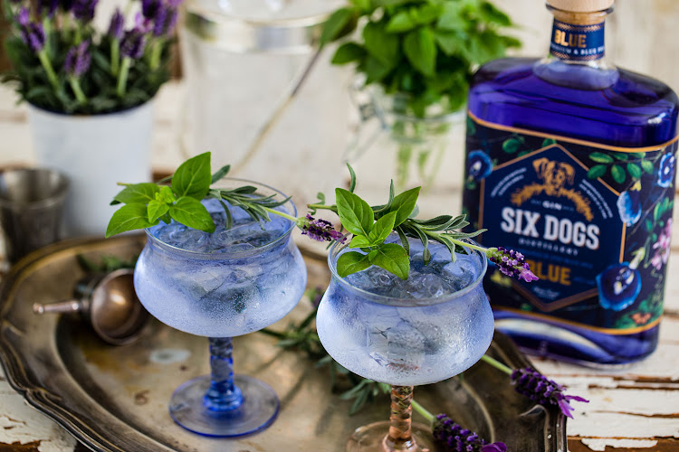 Six Dogs Gin