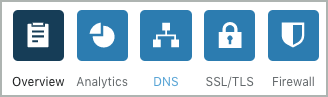 The DNS icon is selected.