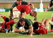 Frans Malherbe scores his first Test try during a Rugby World Cup Pool B match against Canada.