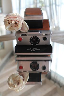 Upside down Polaroid di arianna_tammone