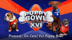 Puppy Bowl XVI Presents: Too Cute! For Puppy Bowl thumbnail