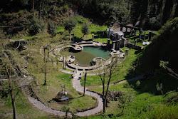 garden and streams