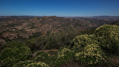 Photo: Spring wildflowers along Chalone Peak Trail, looking southeast